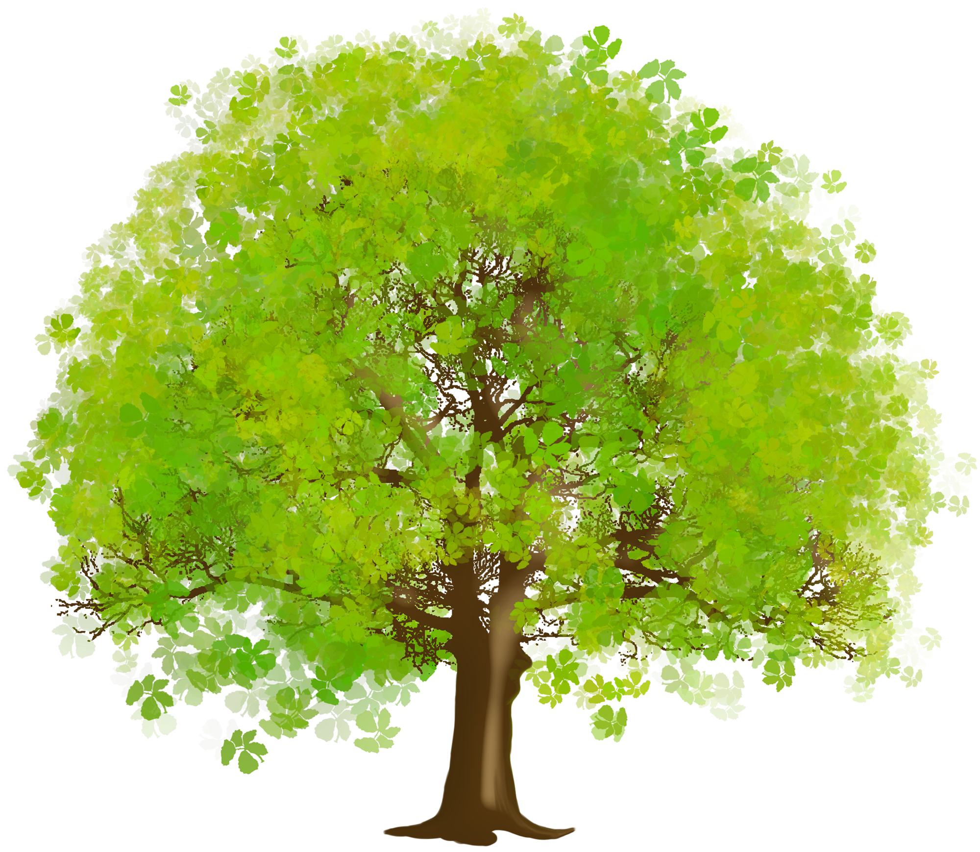 Tree Clipart Wallpaper.