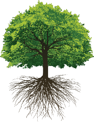 Tree Clipart With Roots Clipground
