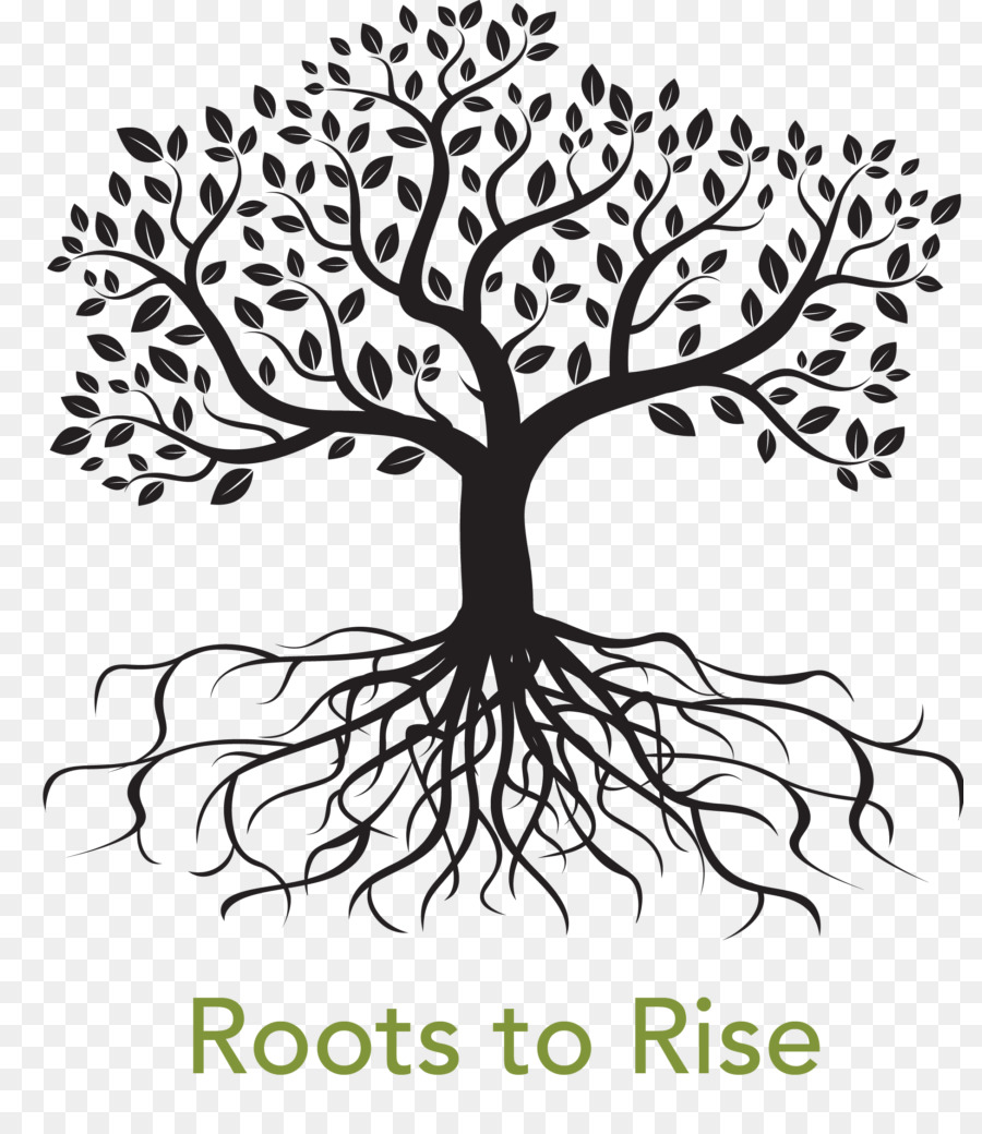 Coloring book Drawing Root Tree Clip art.