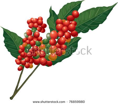 Tree Coffee Stock Vectors & Vector Clip Art.