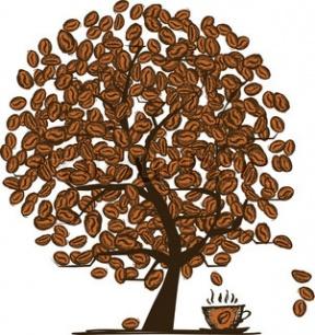 The Coffee Tree.