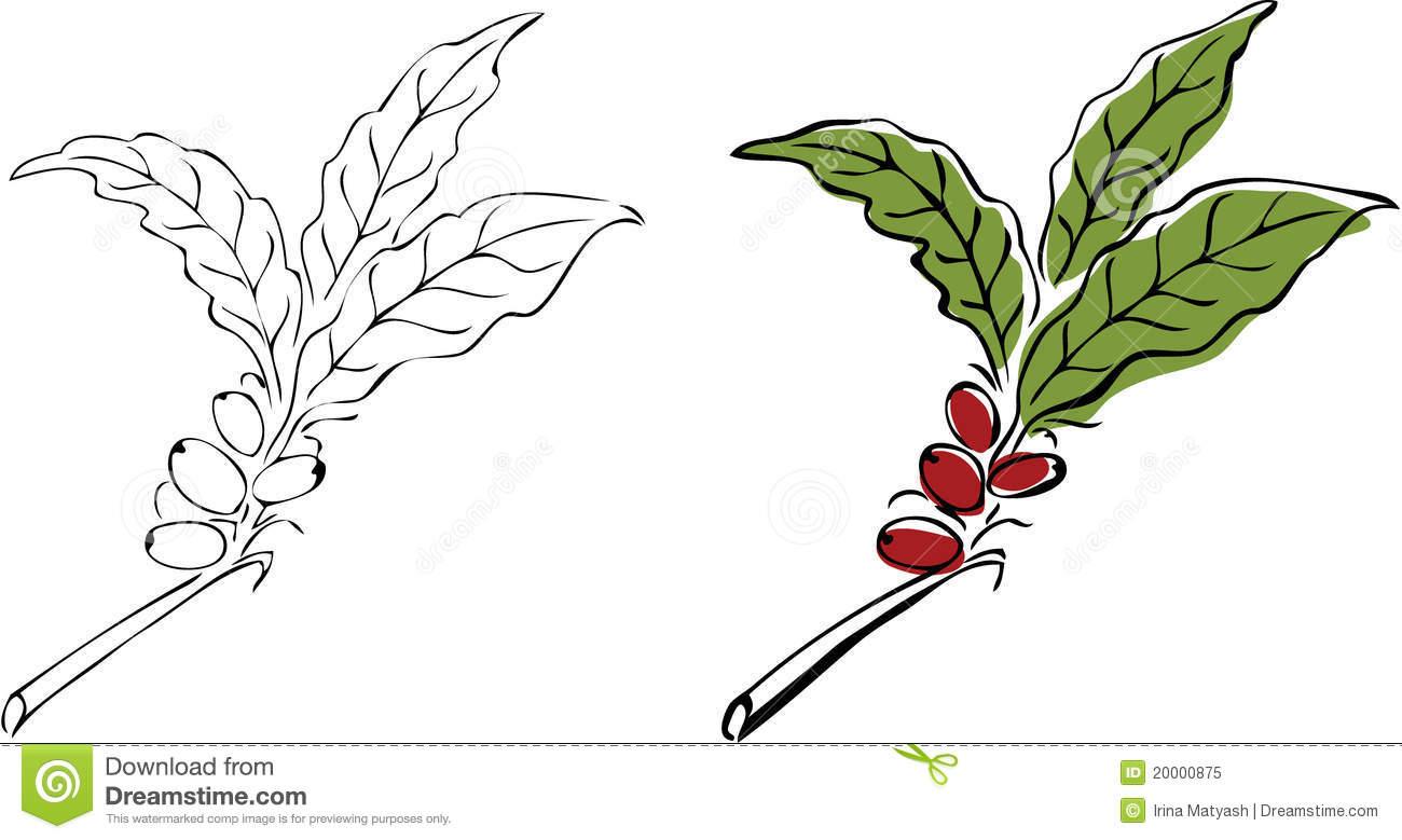 Coffee Tree Clip Art.