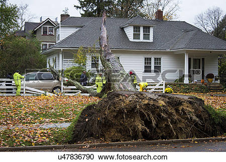 Stock Photography of USA, New Jersey, Moorestown. Hurricane Sandy.