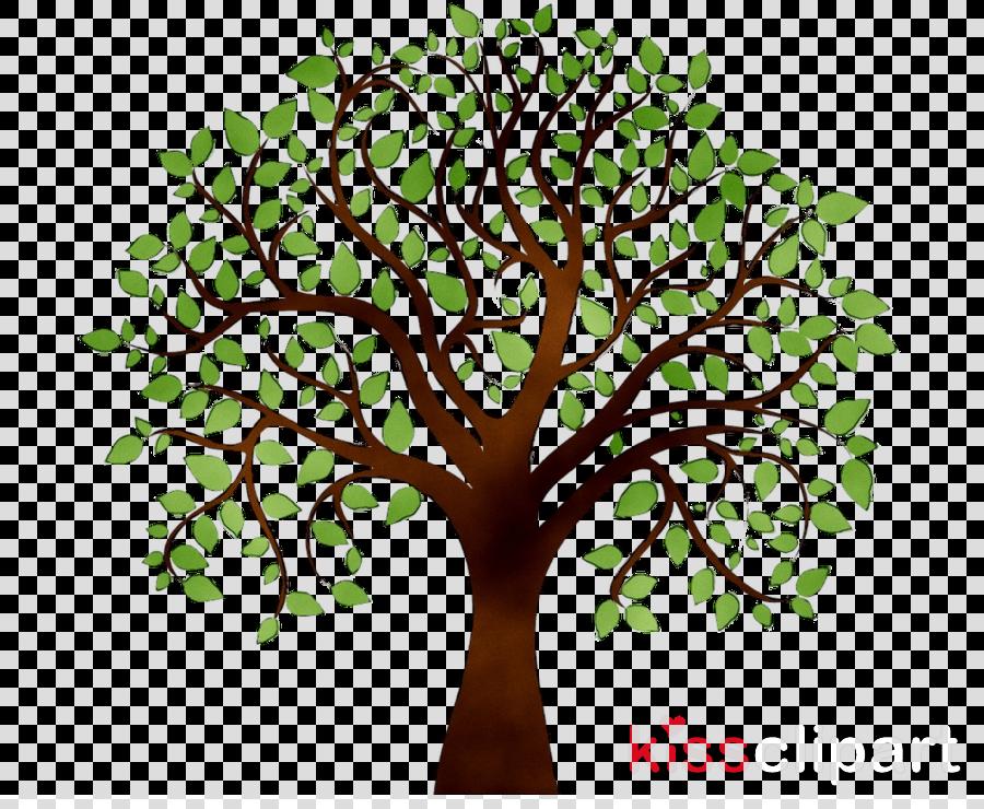 Oak Tree Drawing clipart.