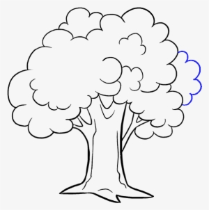 Tree Drawing PNG Images.