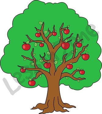 Parts Of The Tree Clipart.