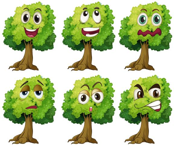 Trees with face.