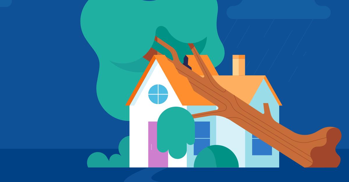 Tree Falls On House.