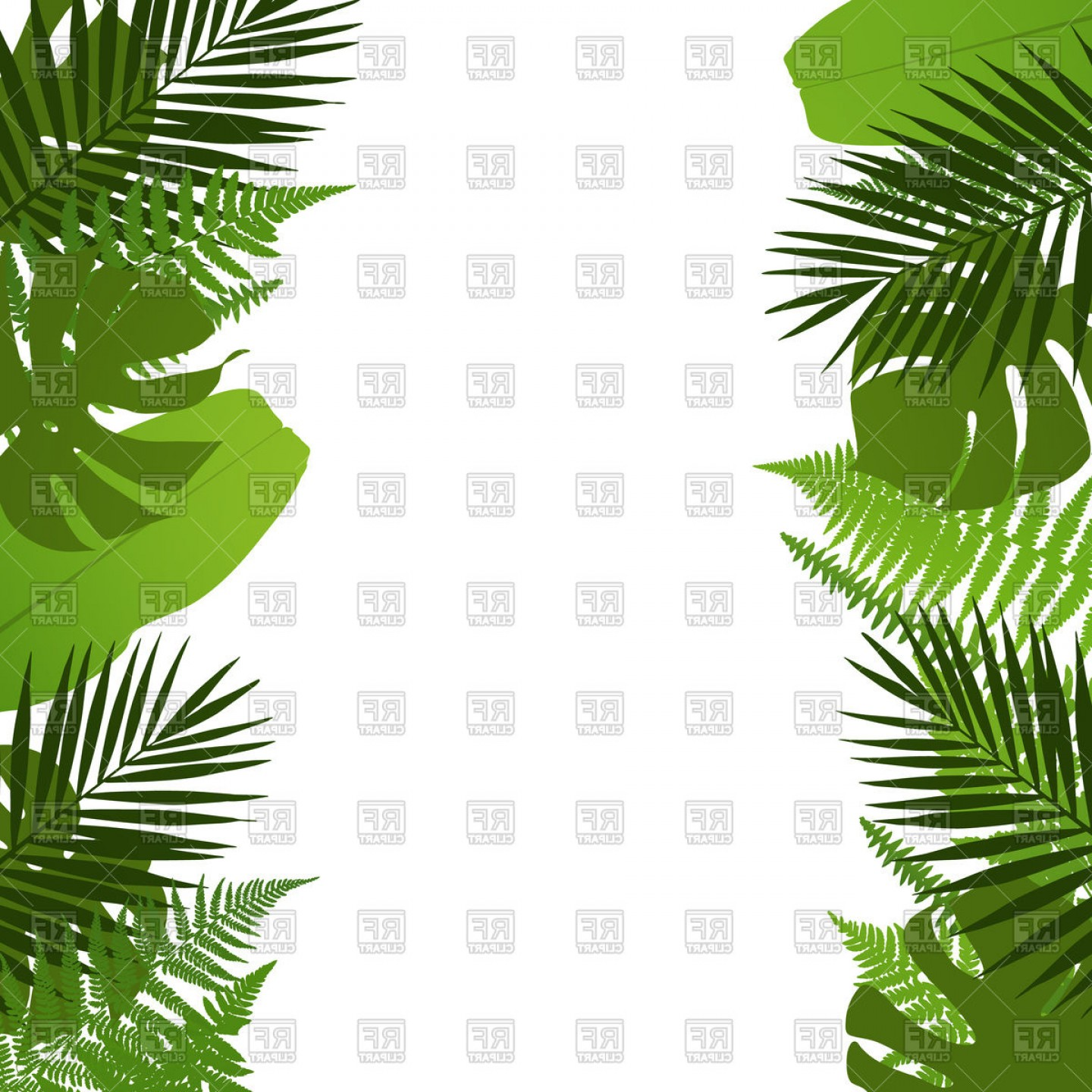 Exclusive Tropical Leaves Background Palm Tree Fern Monstera And.