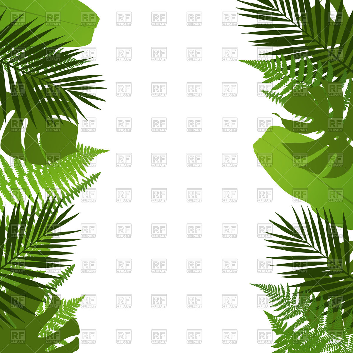 Tropical leaves background.
