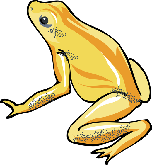 Tree Frog Clipart Png.
