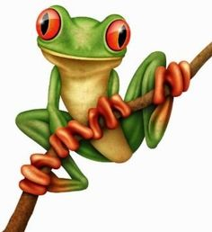 Deadly tree frog clipart.