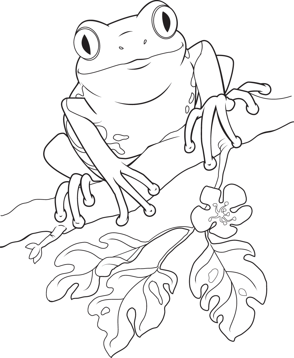 Free Tree Frog Clipart Black And White, Download Free Clip.