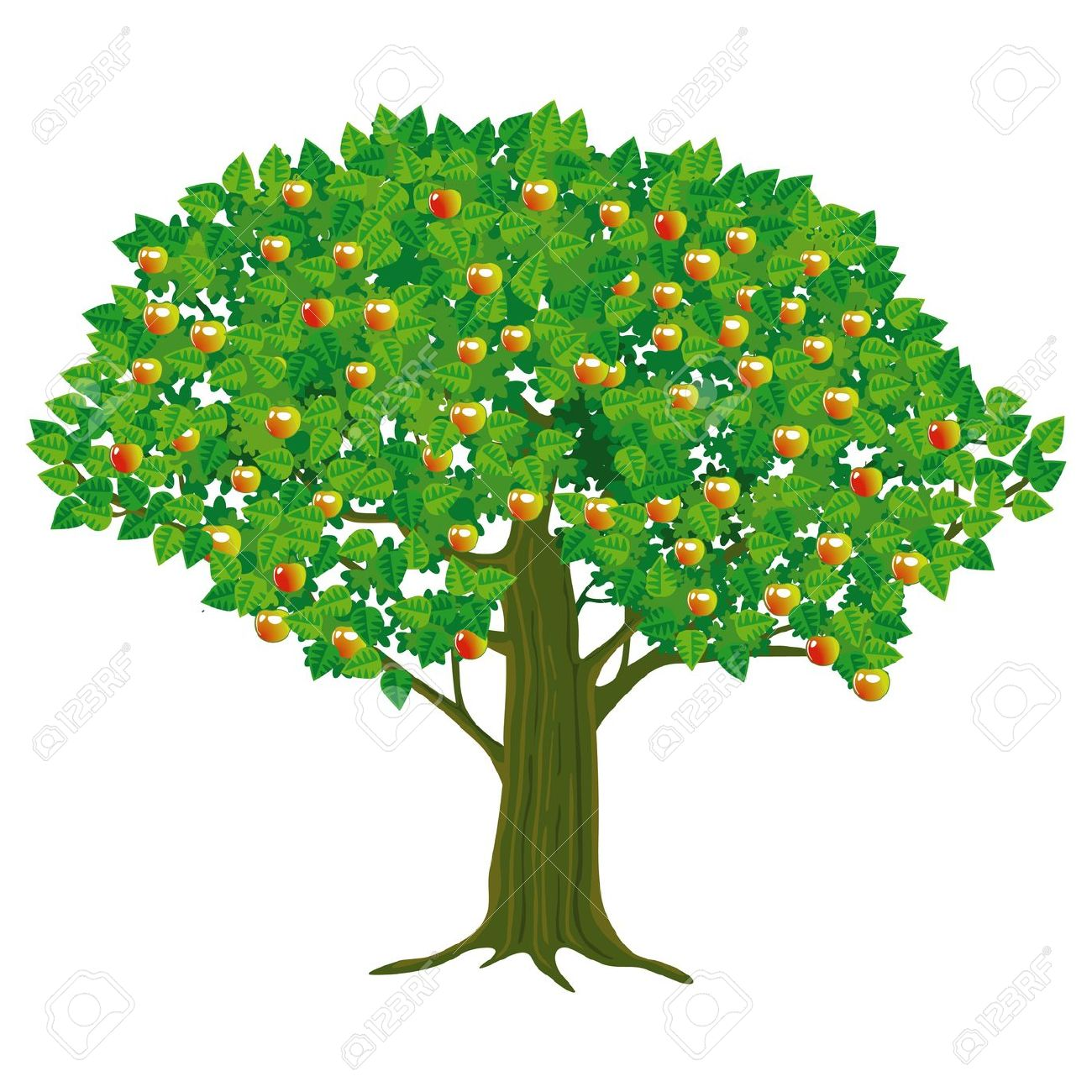 Apple tree without fruit clipart.
