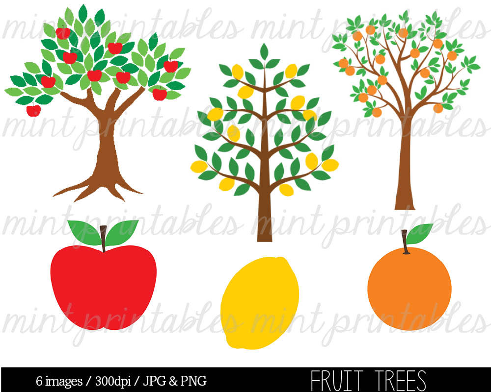 Fruit trees clipart - Clipground