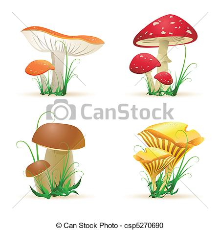 Fungi Illustrations and Clip Art. 2,394 Fungi royalty free.
