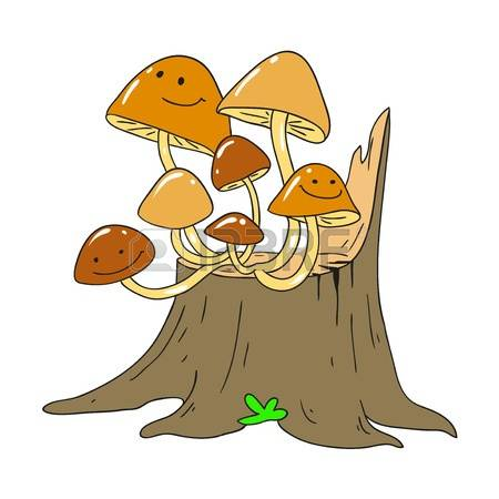 Tree Fungus Stock Photos Images. Royalty Free Tree Fungus Images.