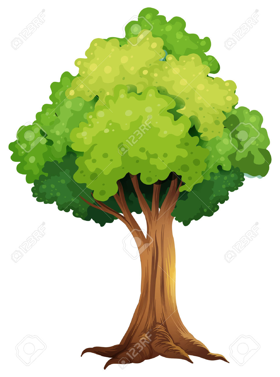 Illustration Of A Giant Tree On A White Background Royalty Free.