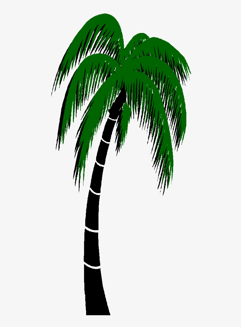 Graphics For Palm Trees Animated Graphics.