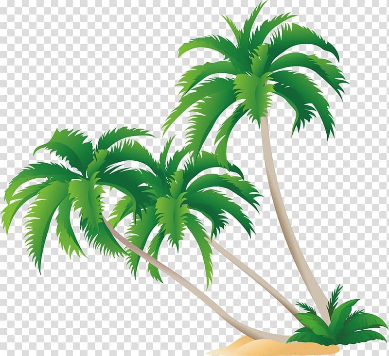 Green palm tree , High.