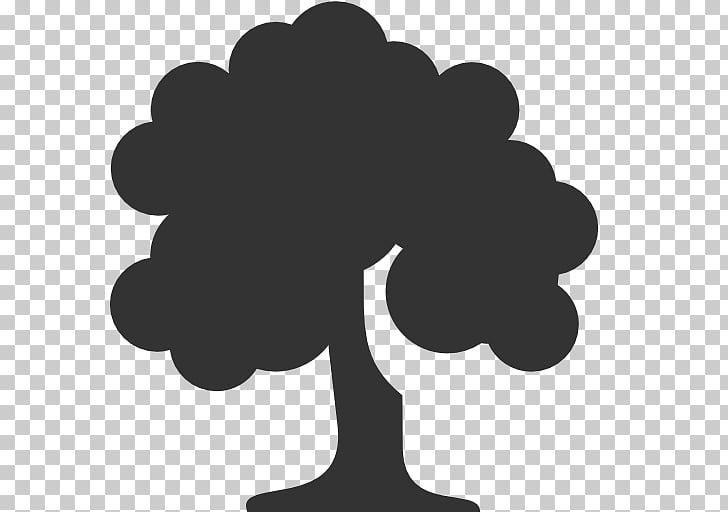 Computer Icons Tree Deciduous, Tree Icon.