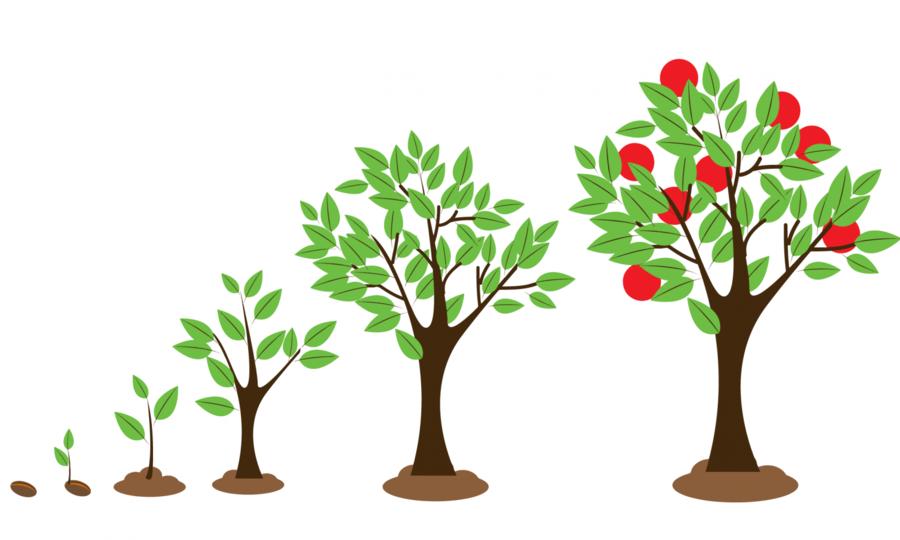 Leaf Illustration clipart.