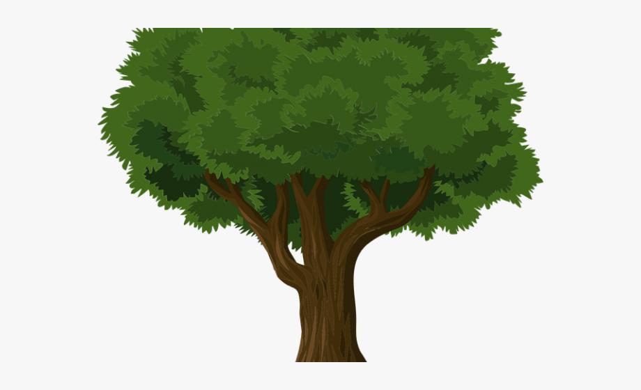 Banyan Tree Clipart Grass Clipart.