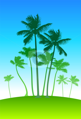 Palm Trees And Sky Background Clipart.