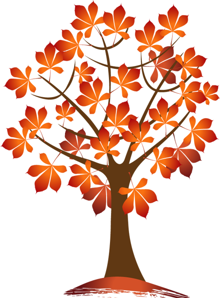 Autumn Trees and Leaves.