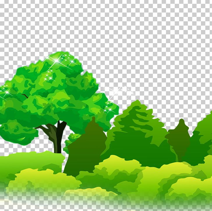 Tree Forest Leaf PNG, Clipart, Computer Wallpaper, Data.