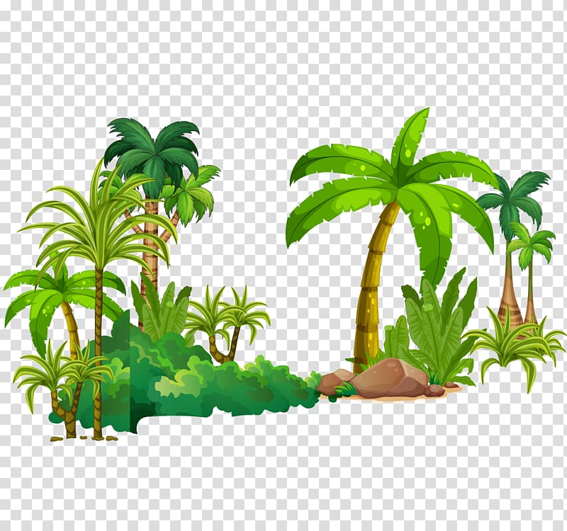 Green palm tree , Tree Tropical rainforest Euclidean.