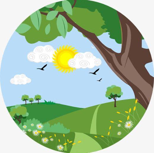 Trees Under The Sun PNG, Clipart, Field, Heaven, Heaven Tree.