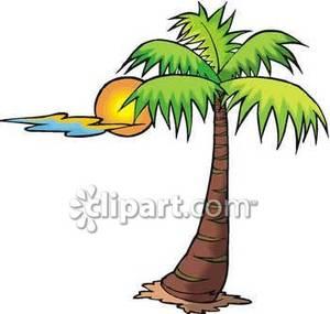 A Palm Tree and a Sun.