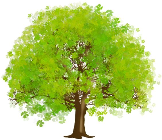 Large Green Tree PNG Clipart.