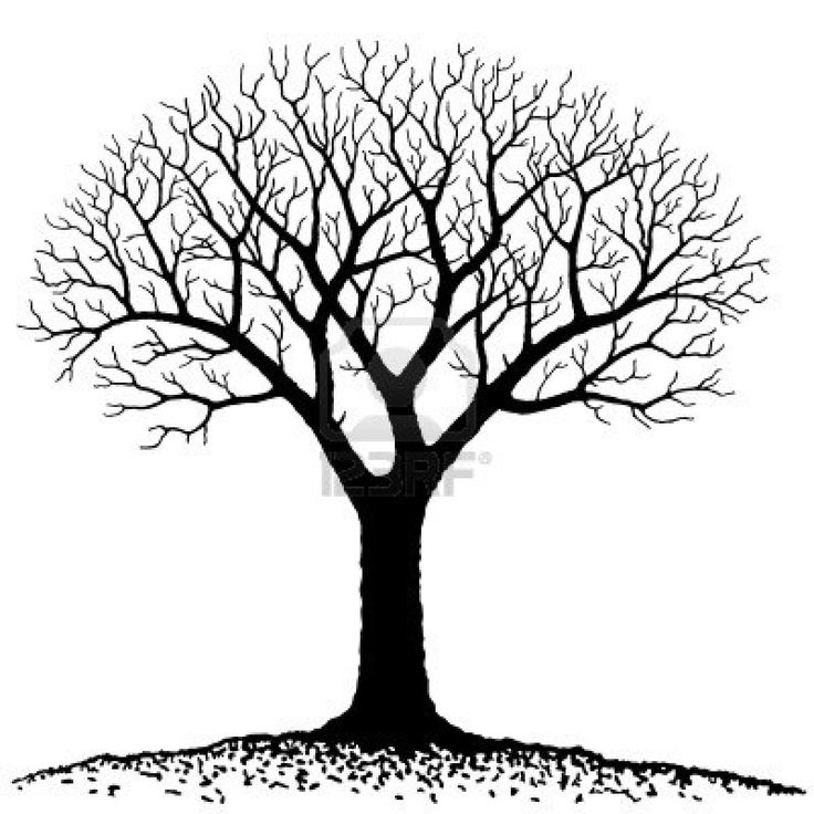 black and white family tree clipart - Clipground