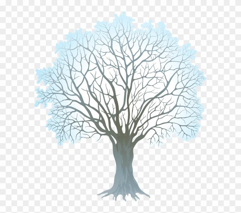 Stock Vector Winter Tree 330kb.