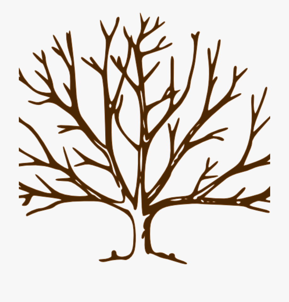 Bare Tree Clipart Bare Tree Bare Tree Clip Art Vector.