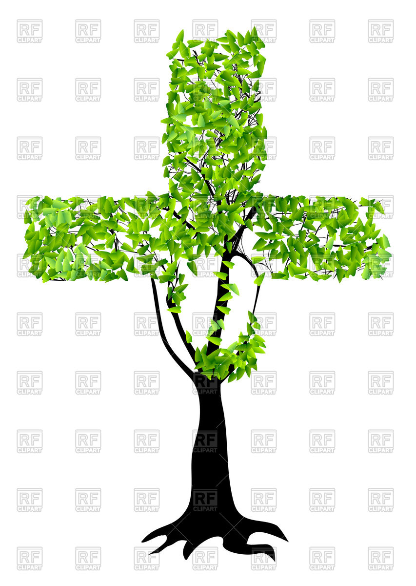 Abstract christian cross as tree isolated on a white background.
