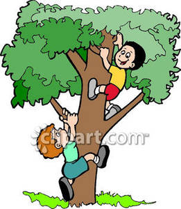 Boy In A Tree Clipart.