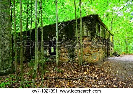Stock Photography of The Wolf's Lair, Hitler's military.