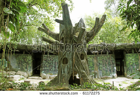 An Evil Tree Guarding The Witch Lair In The Jungle. Stock Photo.