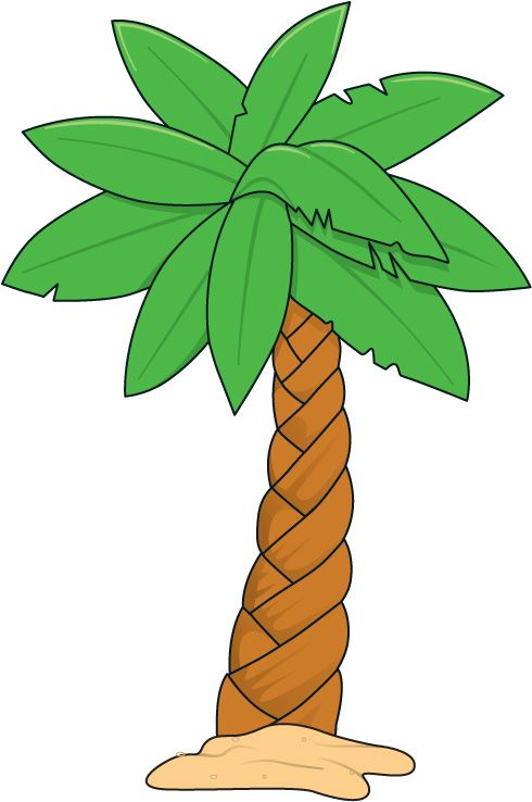 Palm tree clipart #12
