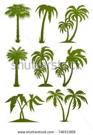 stock vector : set of palm tree silhouettes vector illustration.