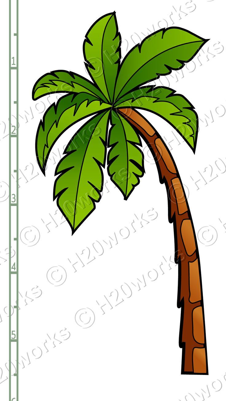Palm genus clipart #7