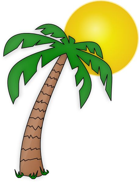 Palm tree clipart #15