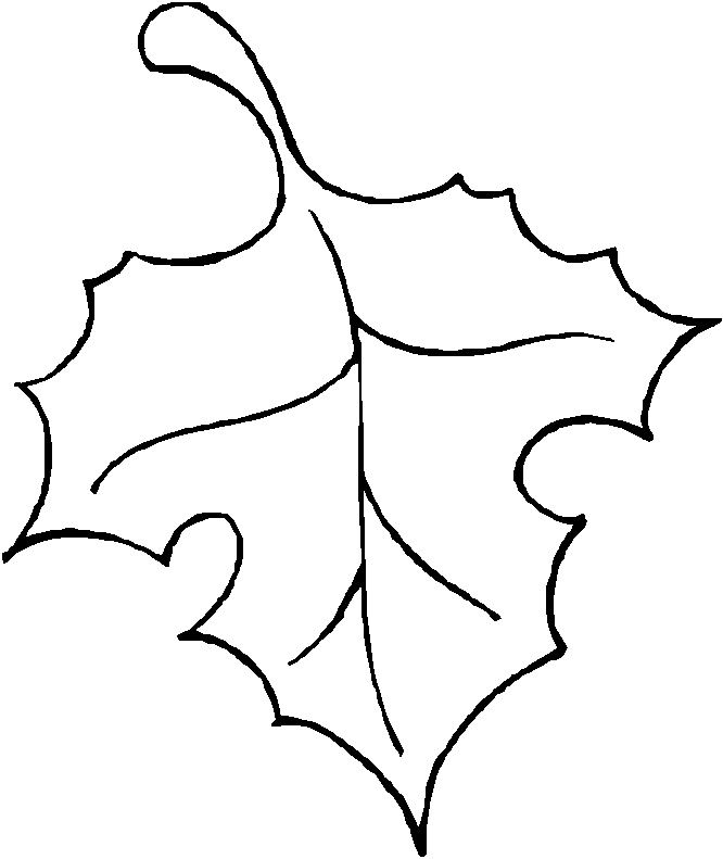 Leaf outline tree with leaves clipart 4 clipart.