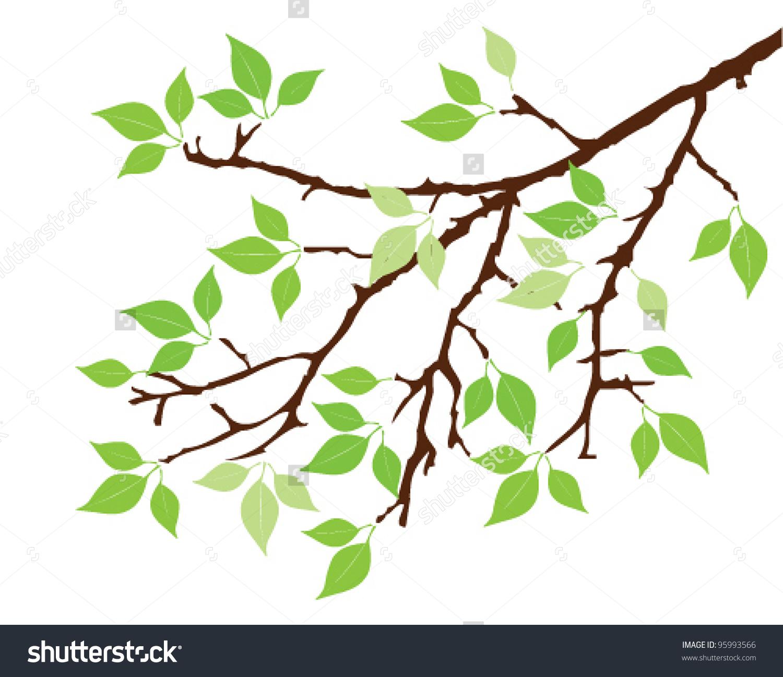 Vector Tree Branch Green Leaves Stock Vector 95993566.