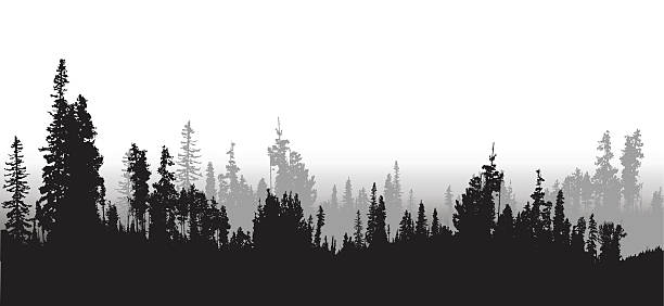 Treeline Clip Art, Vector Images & Illustrations.