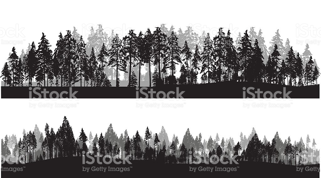 Line Art Of Trees : Tree line clipart clipground