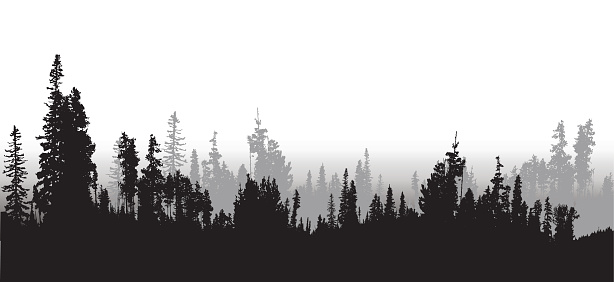 Tree line clipart.